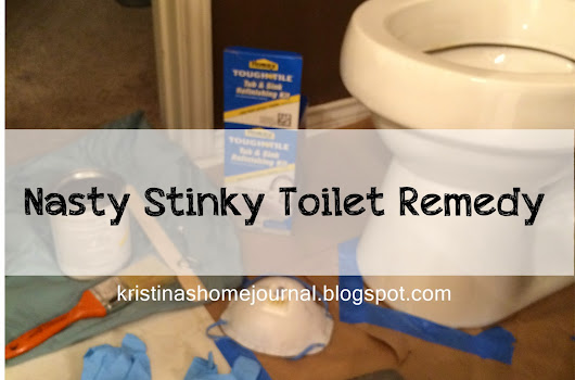 A Nasty Stinky Toilet Remedy