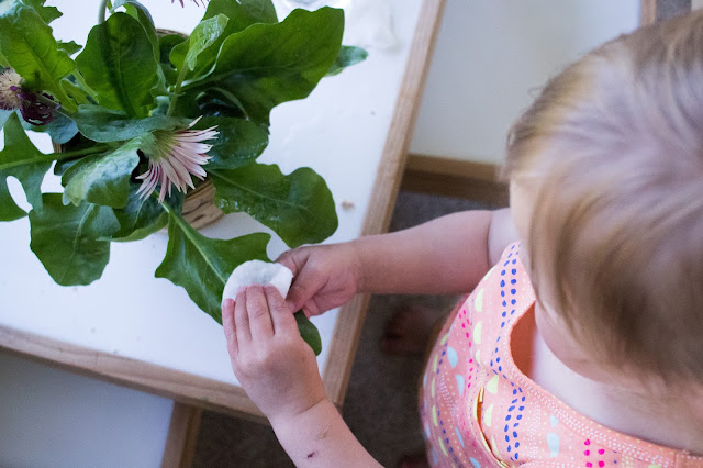 Children love to take care of their environment and one easy way to do that is to add a plant to your child's space. Plant care in a Montessori home can be an easy way to incorporate practical skills into your child's day.
