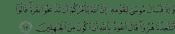 Surat Al-Baqarah Ayat 67