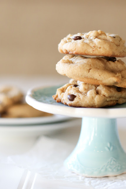 National Picnic Month - Peanut Butter Chocolate Cookies