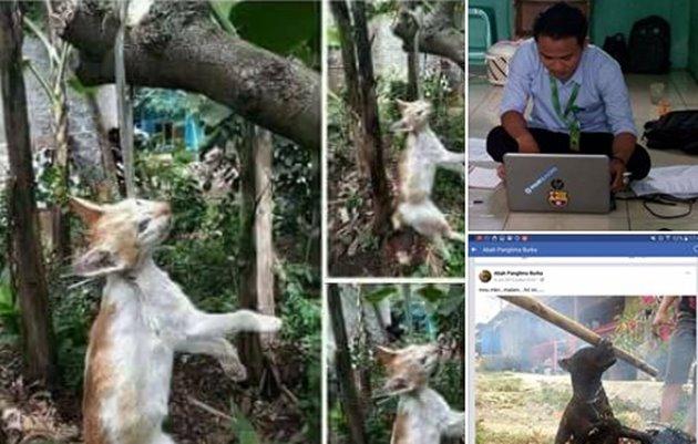 Akun FB Abah Burka Gantung Kucing Sampai Mati - FB