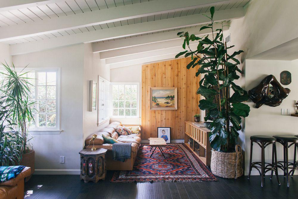 una pizca de hogar decorar con plantas de interior muy