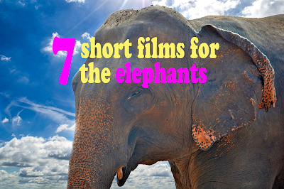 7 short films for the elephants - Rörelse för djurrätt