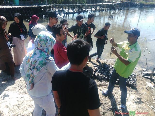 wisata mangrove kampoeng nipah