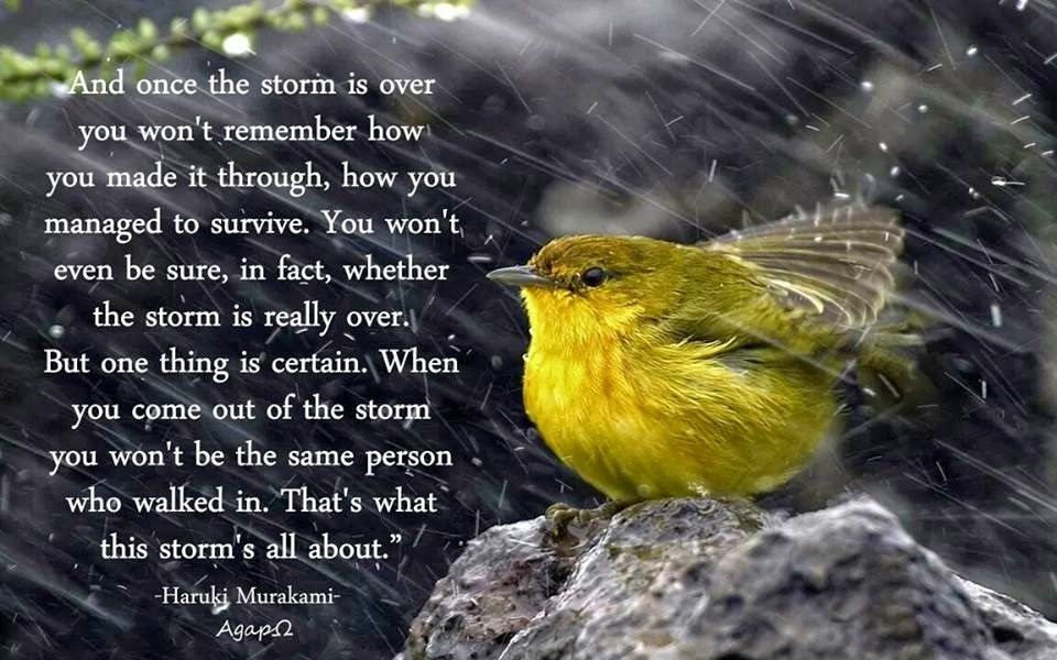 One Thing Is Certain Quotes: And Once The Storm Is Over You Won't Remember How You Made