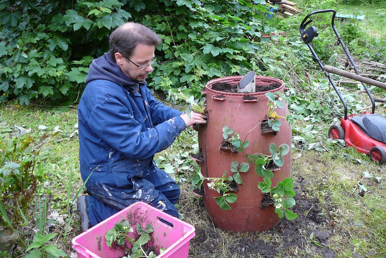 les jardins du laveu une solution pour petits jardins les tours salades et fraises. Black Bedroom Furniture Sets. Home Design Ideas