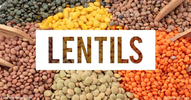 Lentils 01