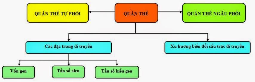 Luyện thi đại học môn Sinh: Cấu trúc di truyền của quần thể.