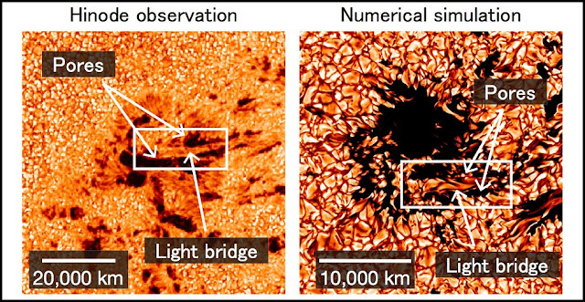 (Left) Hinode observation of a developing sunspot. An elongated bright feature called a 'light bridge' appears between the merging pores (darkest parts). (Right) Computer simulation of sunspot formation. A light bridge resembling the one observed is formed between the pores. (Credit: NAOJ/JAXA/LMSAL/NASA)