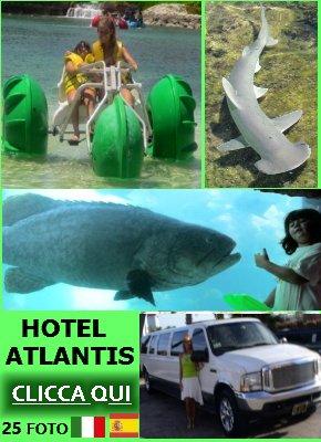 http://vacanzedafavola7.blogspot.it/2014/12/vacanze-hotel-atlantis-bahamas.html
