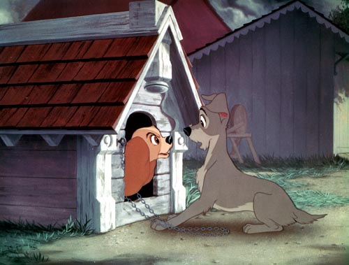 Lady yelling at Tramp Lady and the Tramp 1955 animatedfilmreviews.filminspector.com