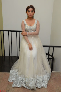 Anu Emmanuel in a Transparent White Choli Cream Ghagra Stunning Pics 045.JPG