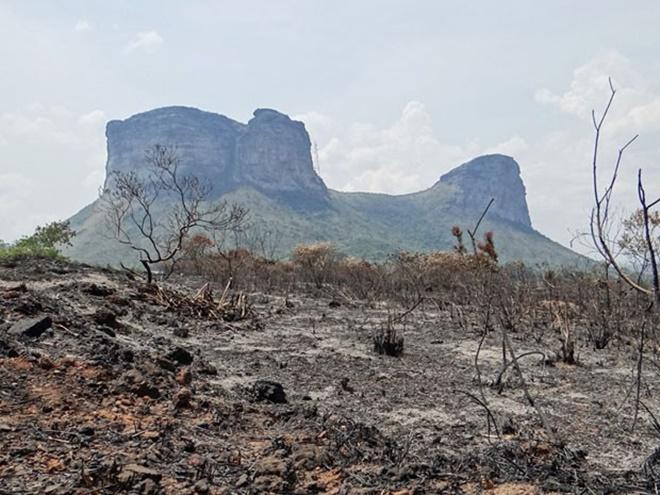 Chapada Diamantina: Área destruída por fogo já equivale a mais de 350 campos de futebol