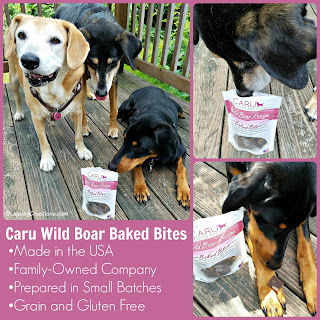 rescue dogs caru wild boar treats