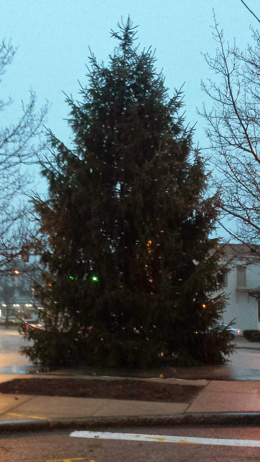 Christmas tree downtown Franklin
