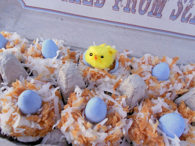 mini coconut cupcakes packaged in egg carton