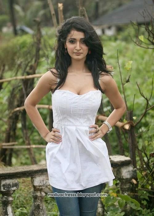 Malayalam Actress Delnaz Irani Hot Expose Stills-8377