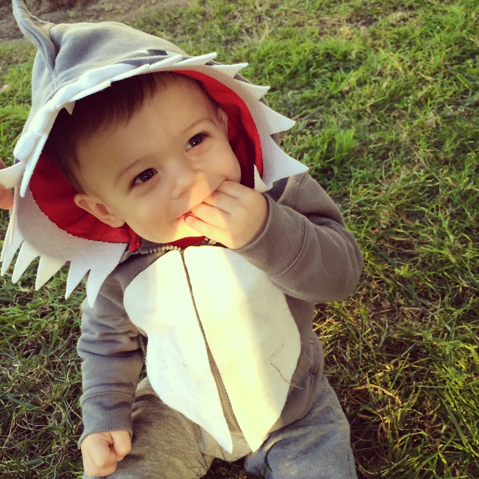5a1bf6f2f Attack Of The Cute!!! Sc 1 St Project Baby/Mom. image number 6 of shark  costume ...
