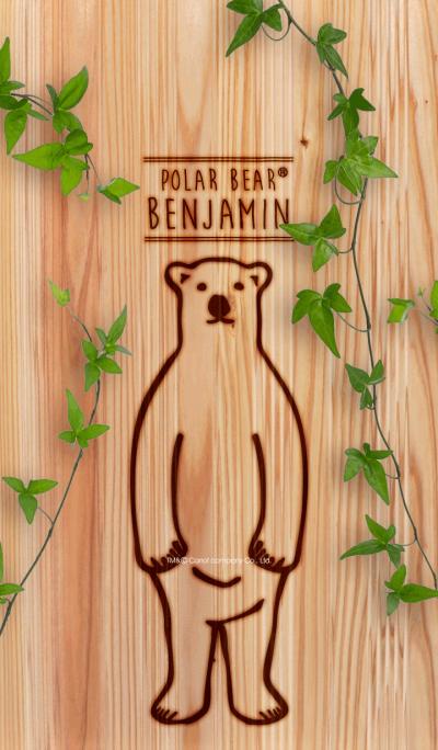 POLAR BEAR BENJAMIN2