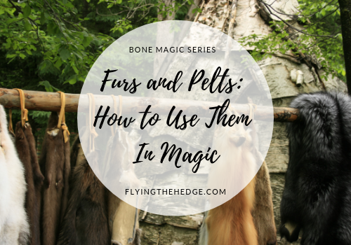 Bone Magic Series: Furs and Pelts: How to Use Them In Magic