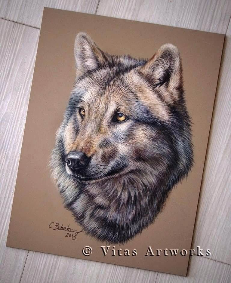 04-Wolf-Carolin-Behnke-www-designstack-co