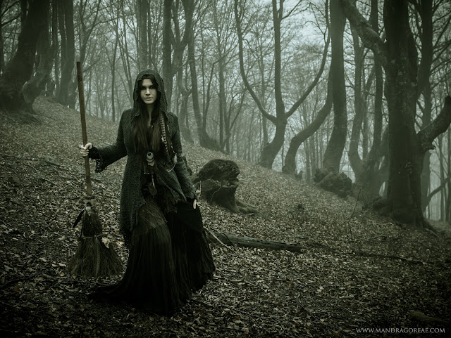 Witch into the woods with a Raven Broomstick