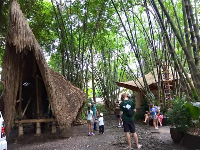 HOLIDAY BALI INDONESIA - FAMILY CAMP DI GREEN CAMP BALI DAY 1