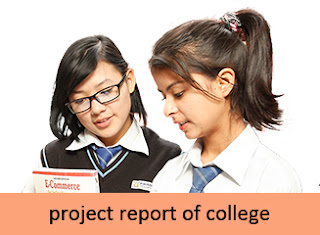 AN INTERNSHIP REPORT | COLLEGE PROJECT WORK SAMPLE