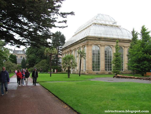 Ботанический сад в Эдинбурге - оранжерея