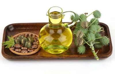 Top 8 Benefits of castor oil: incredible benefits