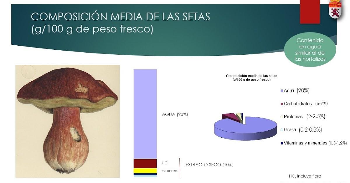 informacion nutricional de los champiñones