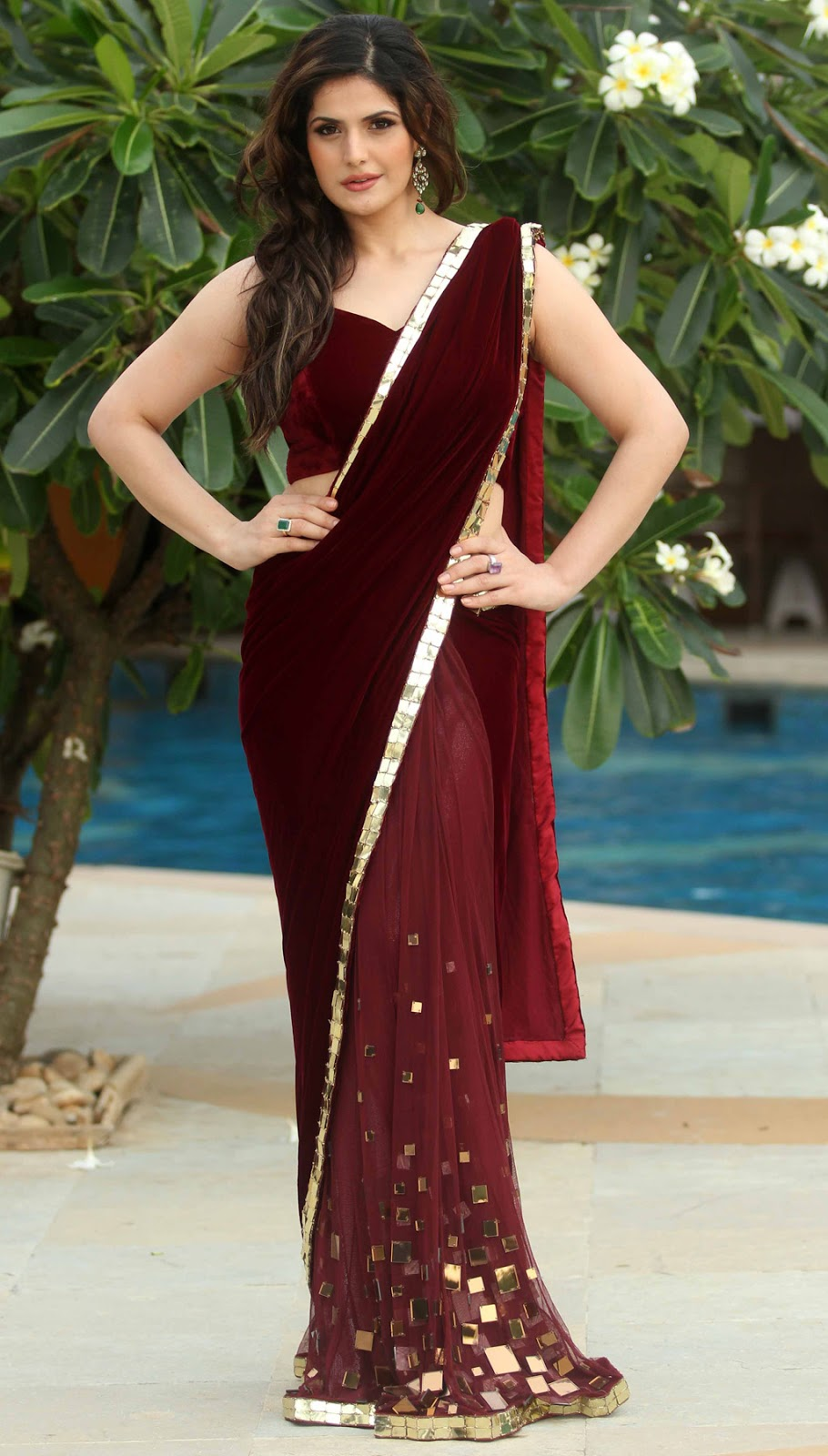 Zarine Khan Hot Photos In Red Saree At Indian Wedding -3837
