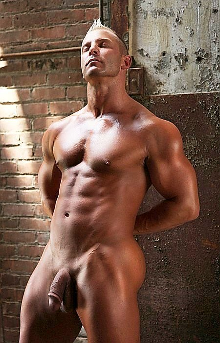 Smooth colt men muscle nude