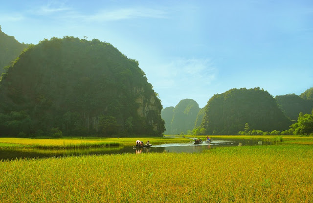 Exploring Tam Coc in Harvest Time 3