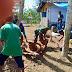 Babinsa Banjarwaru Koramil 0821/01 Lumajang Bantu Warga Pemotongan Hewan Kurban