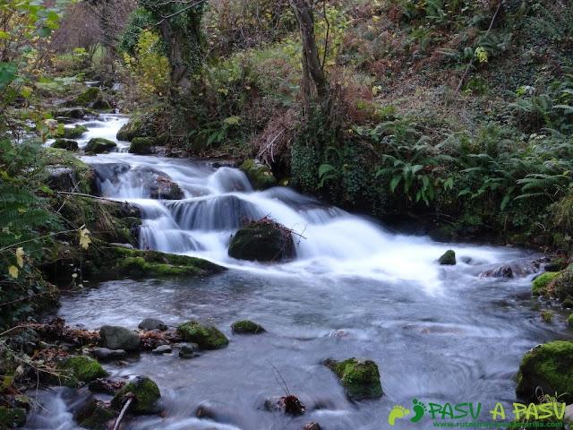 Ruta a Peña Melera y Los Pandos: Río Pino en Aller