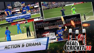 Real Cricket Mod