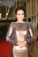 Actress Catherine Tresa in Golden Skin Tight Backless Gown at Gautam Nanda music launchi ~ Exclusive Celebrities Galleries 086.JPG