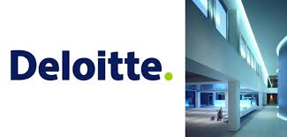 Image result for deloitte nigeria
