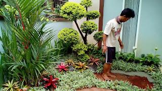 Tukang taman di Parung,Tukang taman murah di Parung,Jasa Renovasi Taman di Parung,Jasa pembuatan taman di Parung