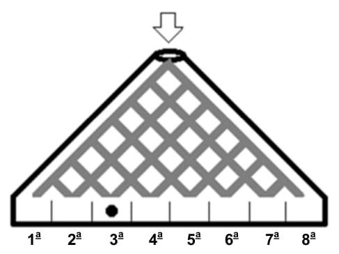 Um brinquedo consiste em um dispositivo vertical, de formato aproximadamente triangular, tal como se vê na ilustração abaixo
