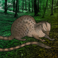 WowEscape Save the Civet …