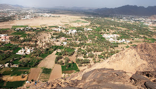 مشروع ناجح في السعودية مدينة نجران
