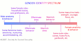 spectrum of acceptance within female promiscuity The word transgender historically (as well as within the and those transgender-spectrum individuals some people do not identify as male or female.
