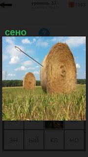 на поле в круглые тюки собрано все сено