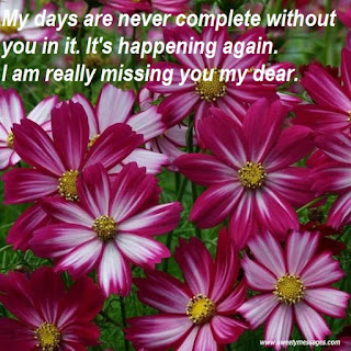 My days are never complete without you in it. It's happening again. I am really missing you my dear.