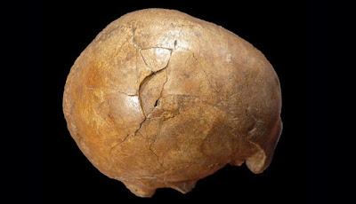 Ilmuwan Pecahkan Misteri Pembunuhan Berusia 33 Ribu Tahun