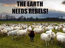 The Earth Needs Rebels: Andy Peacher/Kevin Bull