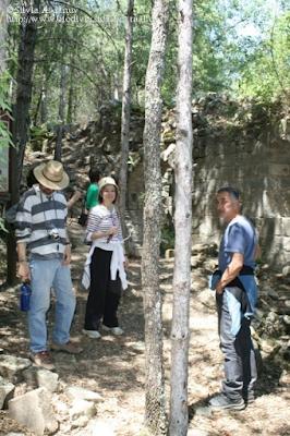 http://www.biodiversidadvirtual.org/insectarium/Participantes-Testing-Punto-BV-Espacio-Pirineos-Graus-9-5-2015-img691436.html