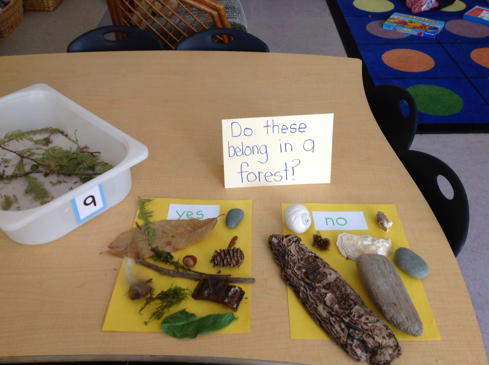 Kindergarten Provocations